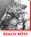 Beach Boys & Dog